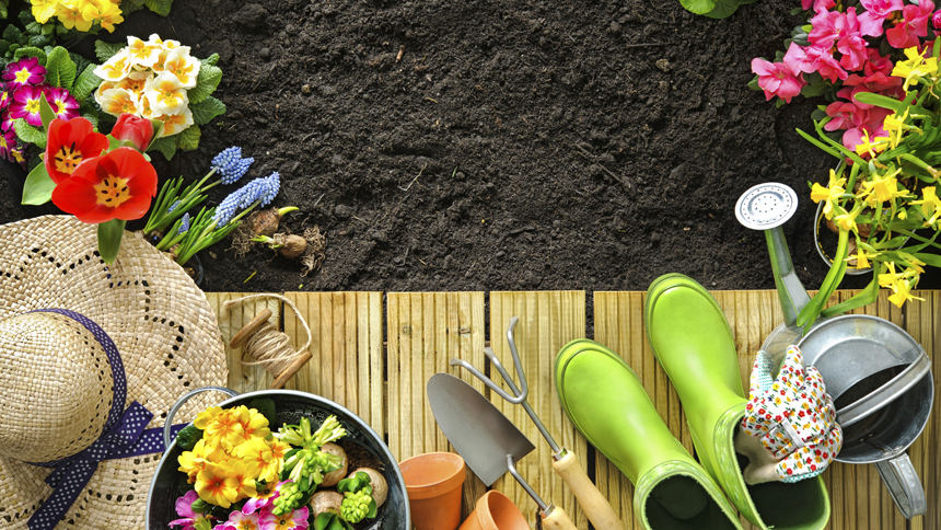 Colours in gardening